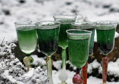 Winter roots wine glass set