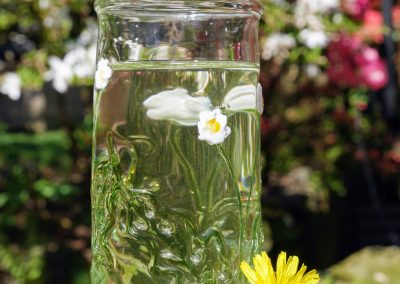 Daisy tumbler  glass