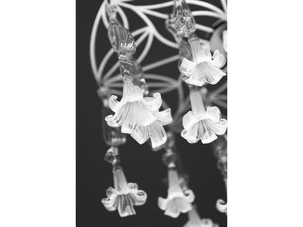whiteliles9_1