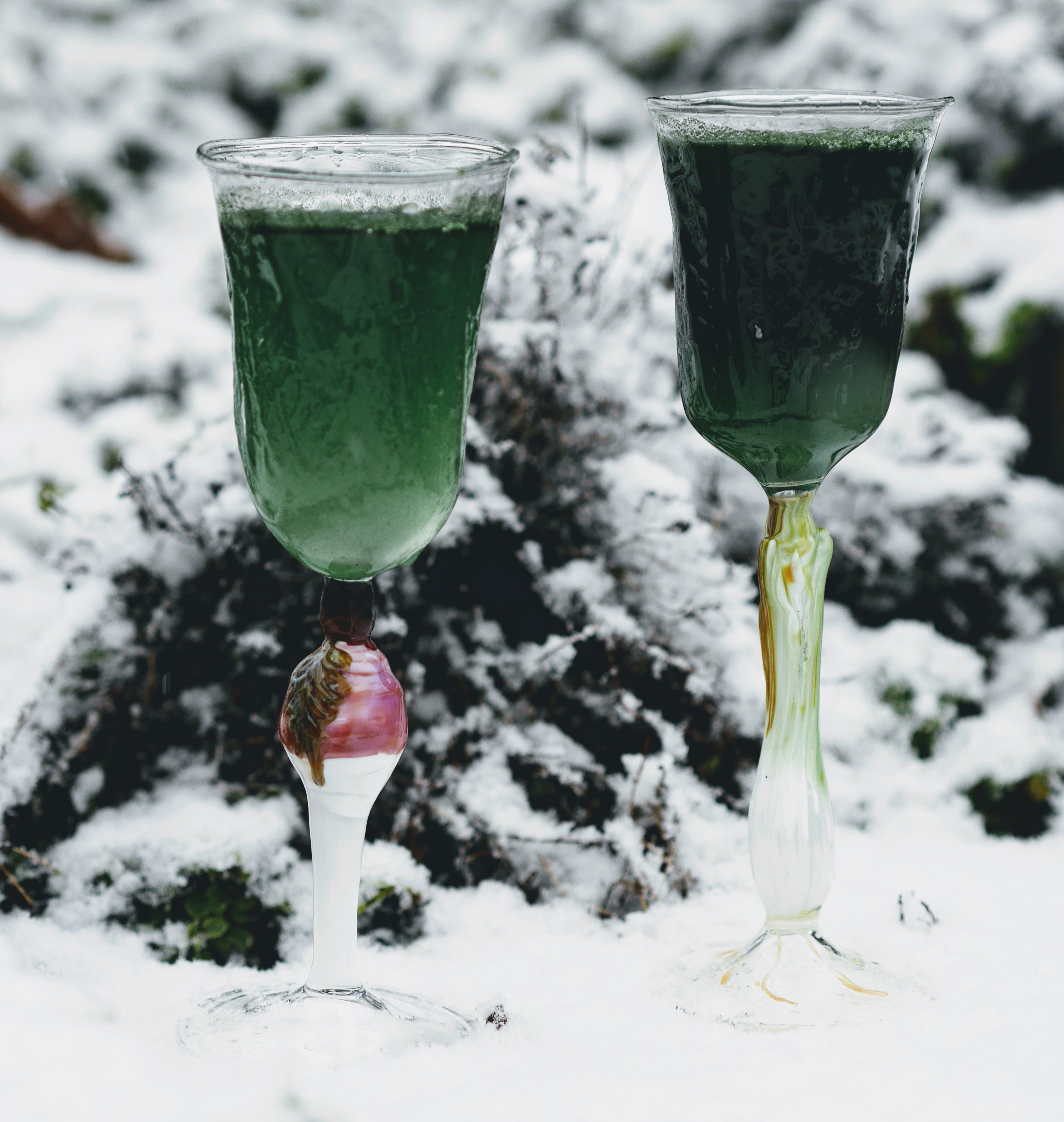 Winter roots wine glass set